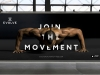 evolve_advertisng_v2